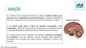 aula-2-sentidos-sensoriais-no-ponto-de-venda-3