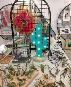 cactus visual merchandising 6