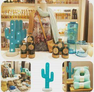 cactus visual merchandising 8