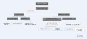organograma equipe visual merchandising 3